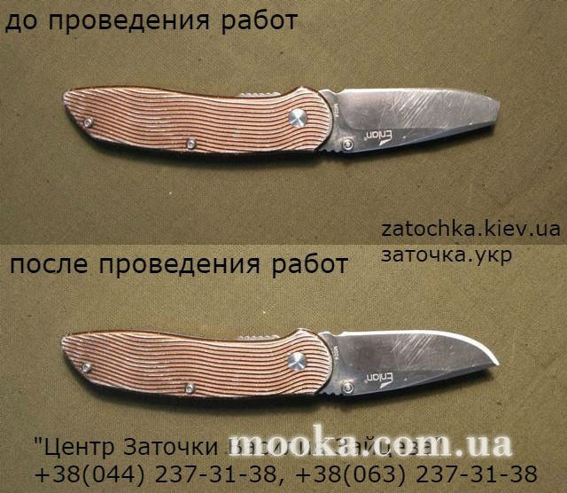 post-1655-0-02257800-1538470517_thumb.jpg