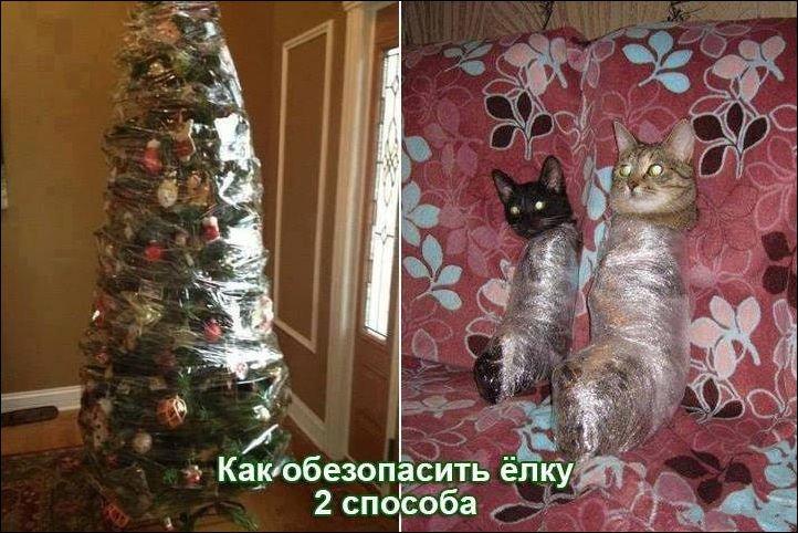 кошки ёлкаl.jpg