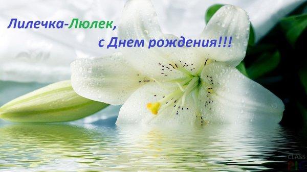 Belaya liliya I voda