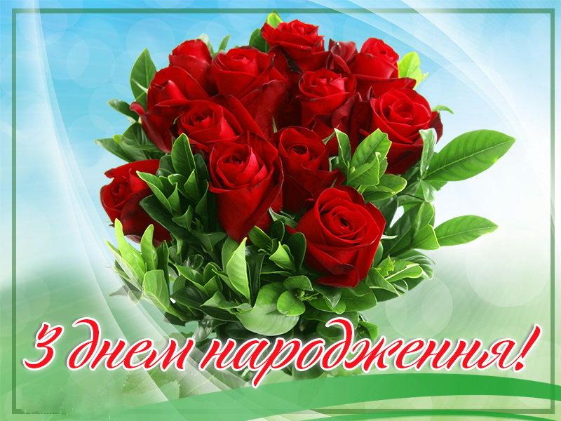 n_75_95843463.jpg