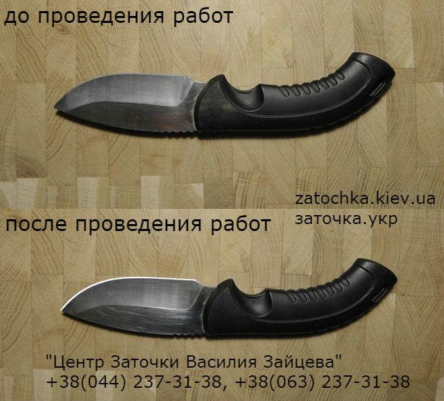 BUCK_forum.jpg